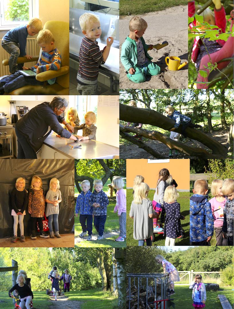 森の幼稚園 園児たち