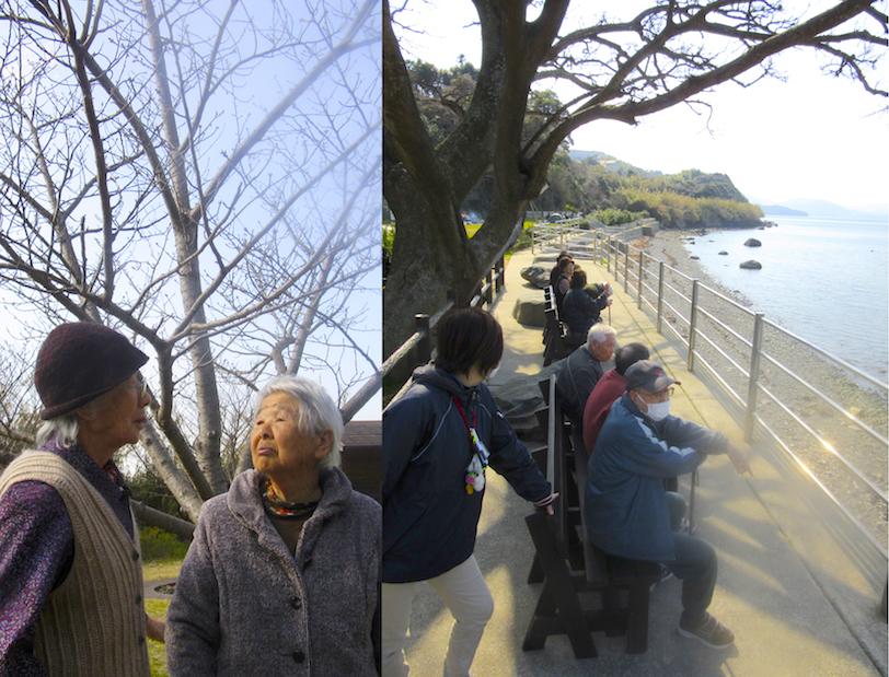 平成28年3月4日道の尾潮井崎公園1