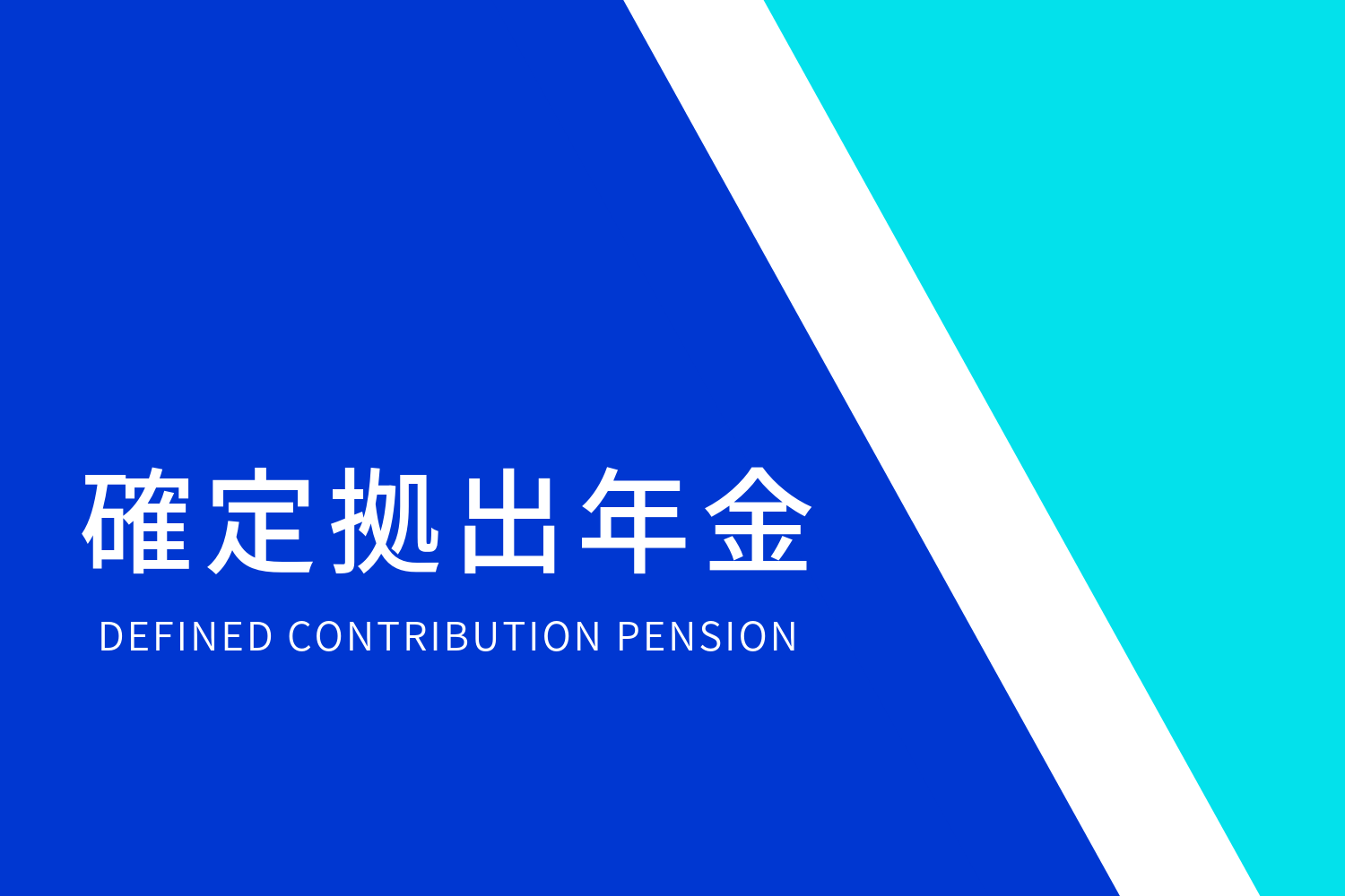 DEFINED CONTRIBUTION PENSION