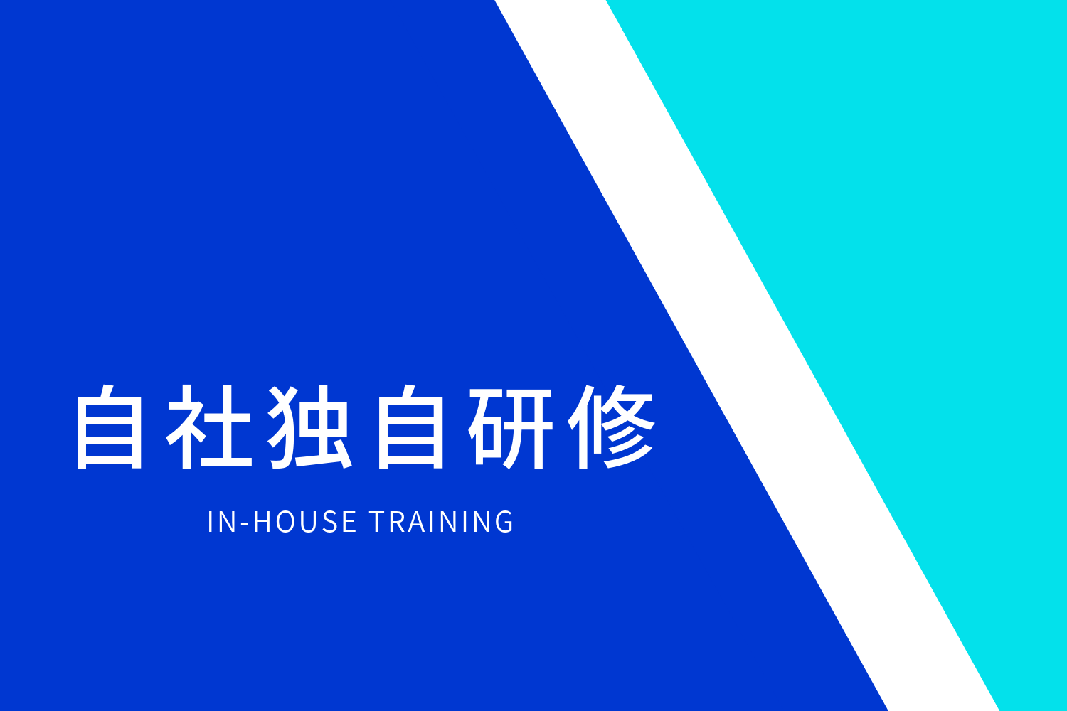 IN-HOUSE TRAINING