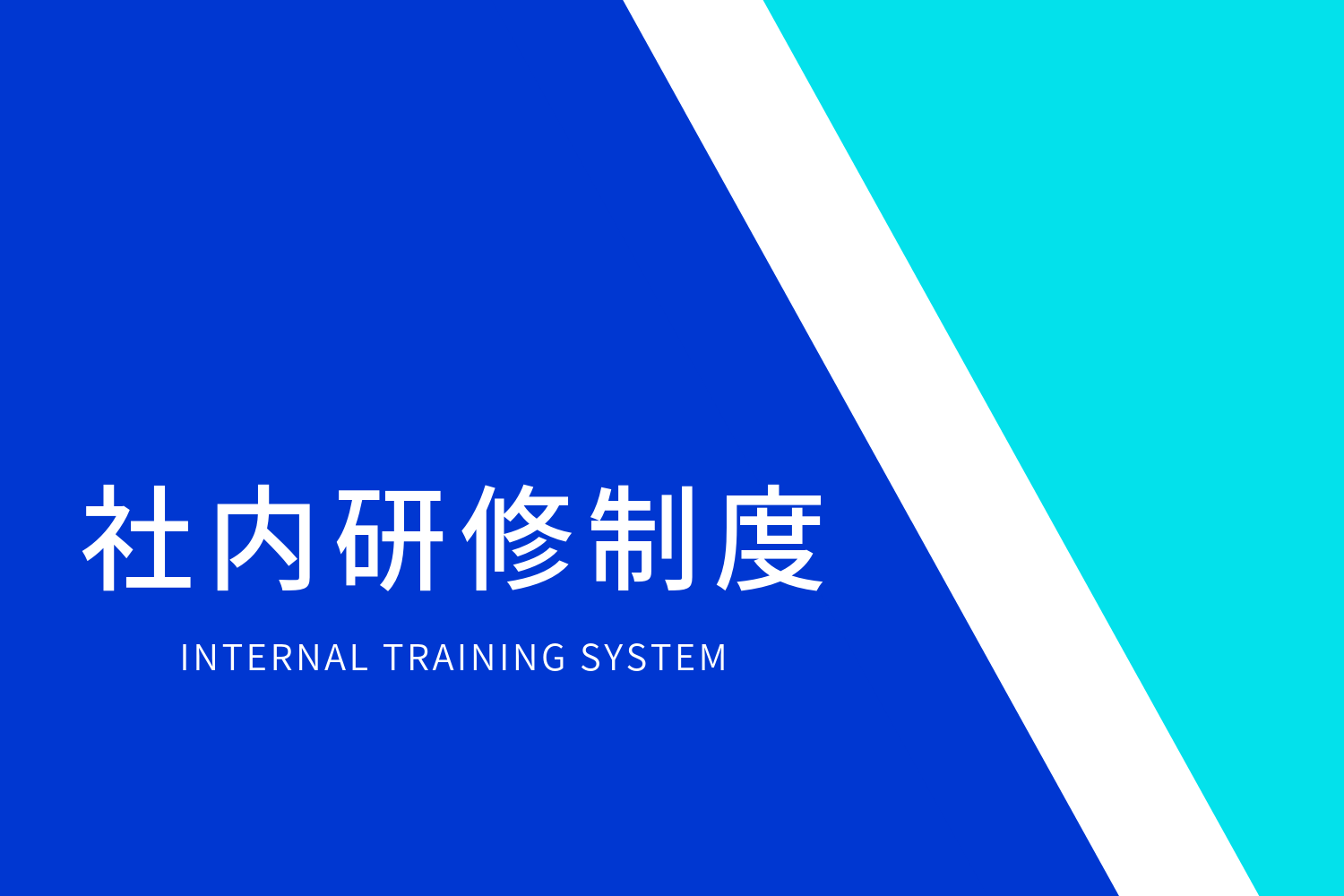 INTERNAL TRAINING SYSTEM
