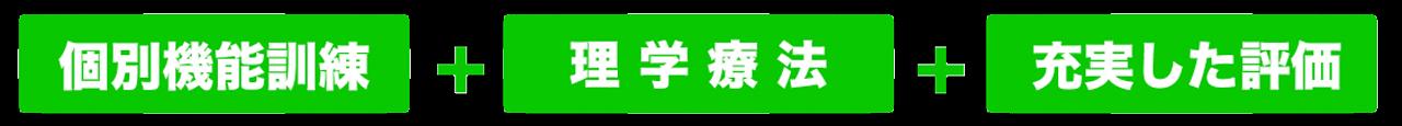 kobetu-rigakuryouhou-hyouka